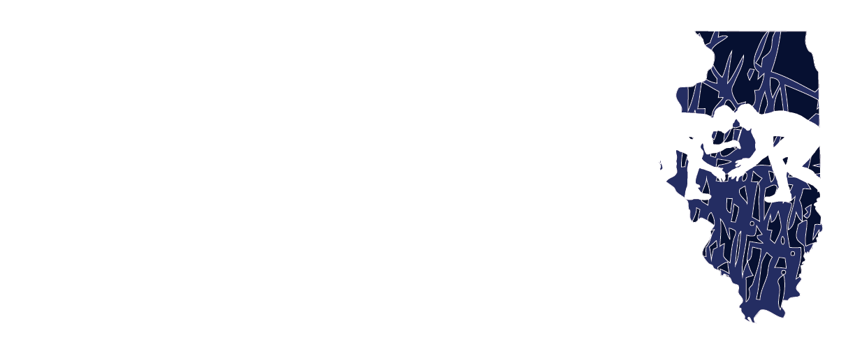 Illinois State Wrestling Dual Team Championships